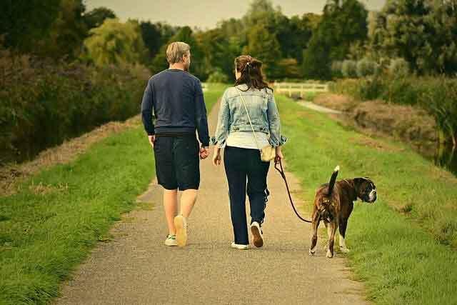 Yürümek Faydalı Egzersizlerdendir