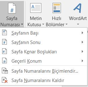 Word Sayfa Numarası Düzenleme 5