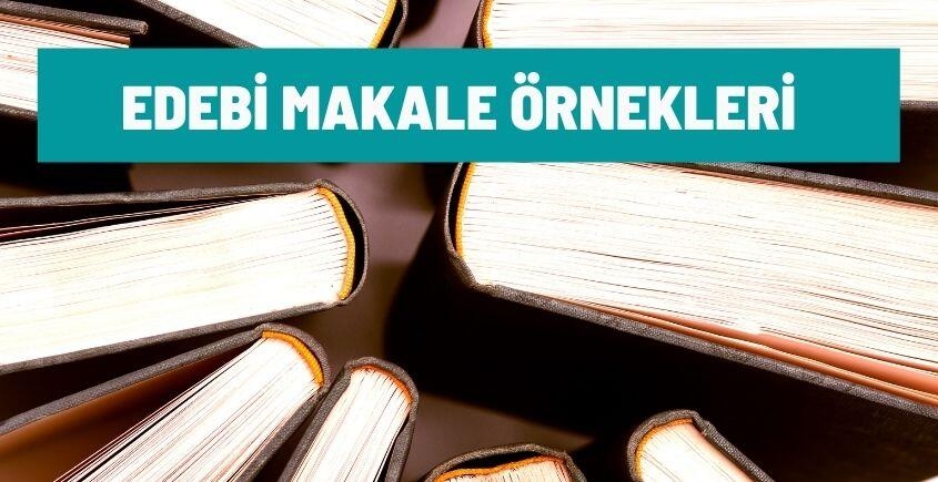 edebi makale ornekleri